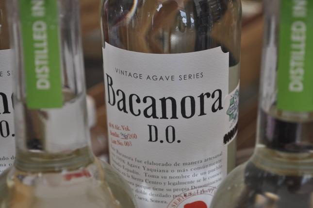 La Nina del Mezcal, DARDO, Bacanora, Dave Millers Mexico
